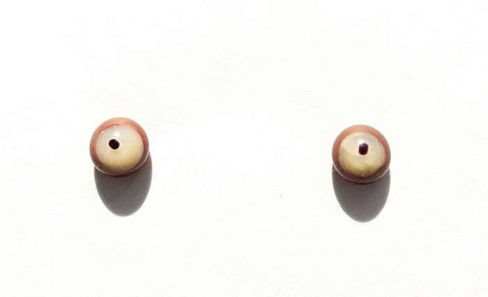 Bone on brown. 6 mm