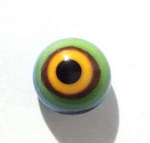 Yellow-green eyes. 7 mm